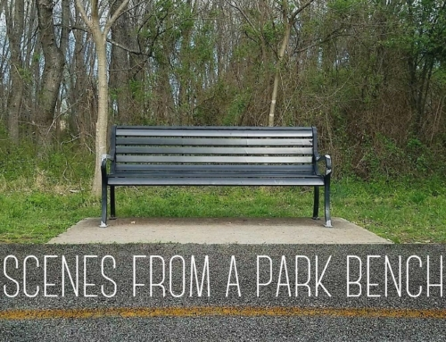 Scenes From A Park Bench – A Short Film // IndieGoGo